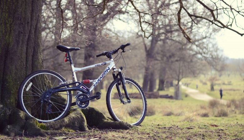 Best Bicycles in India - [current_date format='F, Y'] 4