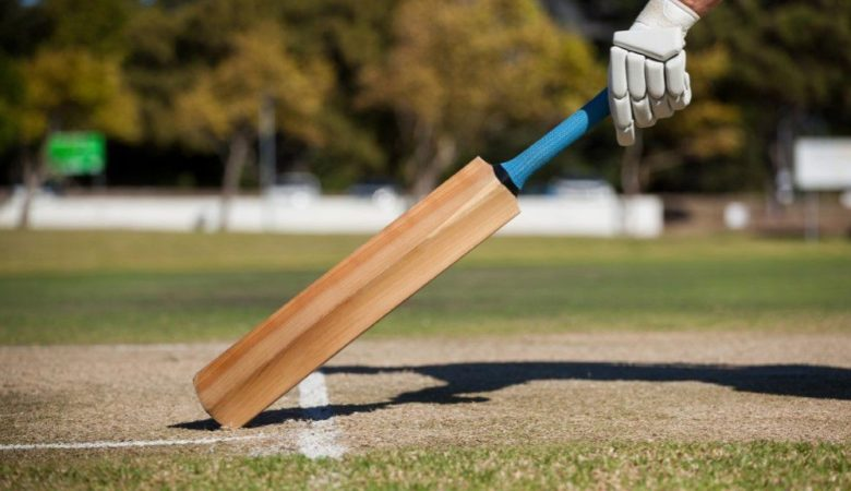Best Cricket Bats Under 500 in India